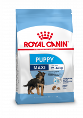 Royal Canin SHN Maxi Junior - Hondenvoer  - 4 kg