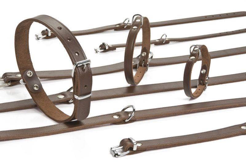 Beeztees Halsbanden Bruin 16 mm 42 cm